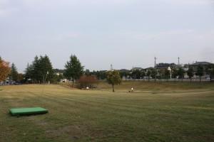 大開公園2