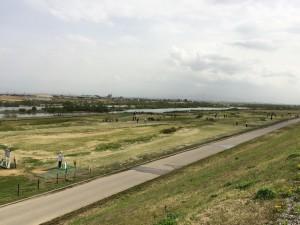 庄川緑地3